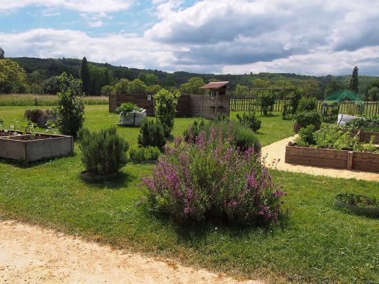 Jardin de bambou picture of camping le paradis saint for Camping le jardin de tivoli