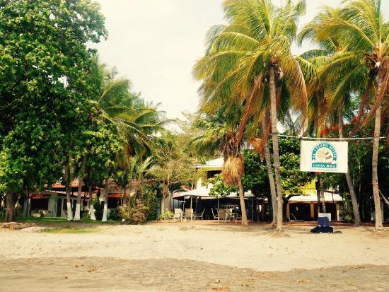El Velero Restaurant: El Valero from the beach.