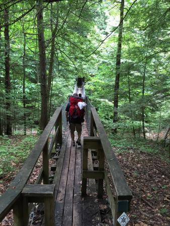 Charit Creek Lodge: Hike to cabin from trail head