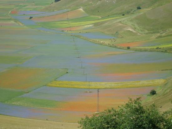 Кастелуччио-ди-Норчия, Италия: Variegature multicolori nel Piano Grande