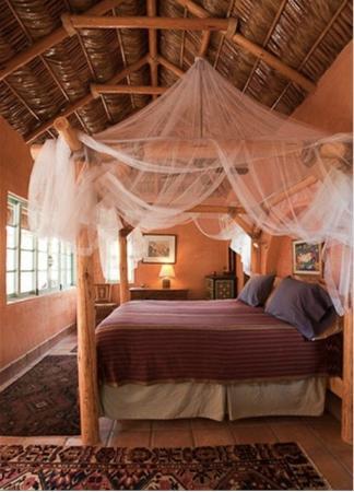 El Encanto de Cabo Pulmo: Casita Suite with Queen bed
