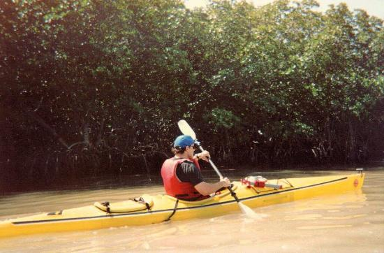 Lignumvitae Key Botanical State Park: kayaking along the key
