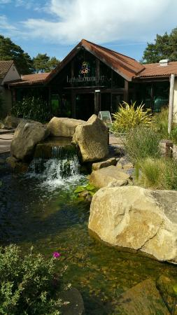 Wild Duck Holiday Park - Haven: The Live Lounge