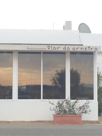 Flor Do Arneiro