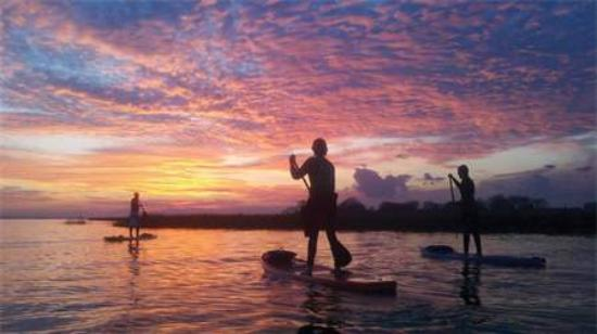 Nature Adventures Outfitters : Stand Up Paddleboarding on Shem Creek