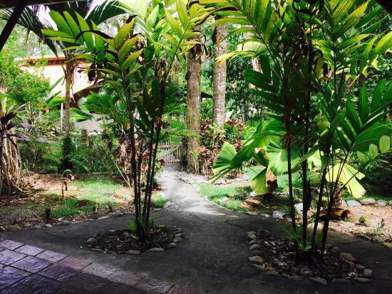La Ponderosa Beach and Jungle Resort : photo2.jpg