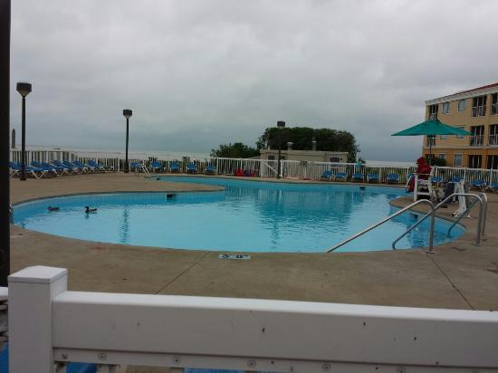 Cedar Point's Sandcastle Suites: Ducks in the pool while  Lifeguard sleeps. Is this sanitary..