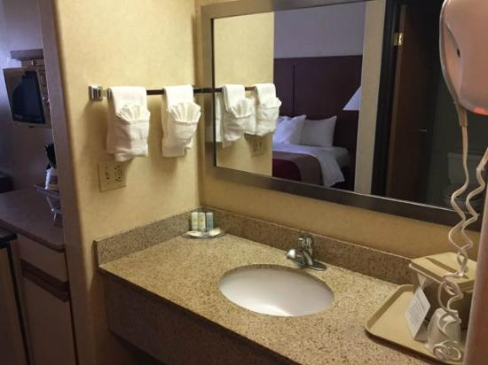 Comfort Inn Denver Southeast: Vanity (outside of the bathroom)