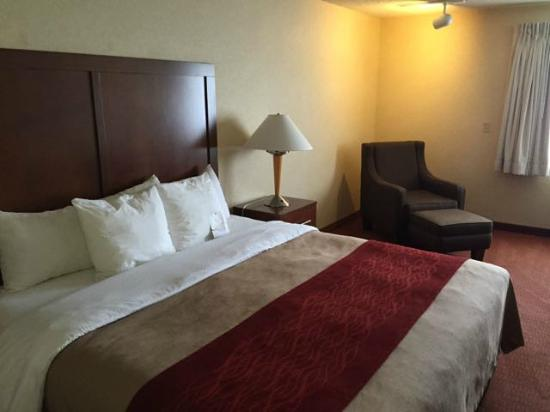 Comfort Inn Denver Southeast: Nice bed linens