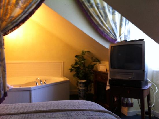 Elk Forge B&B Inn, Retreat and Day Spa: Low ceiling and 1990's TV.