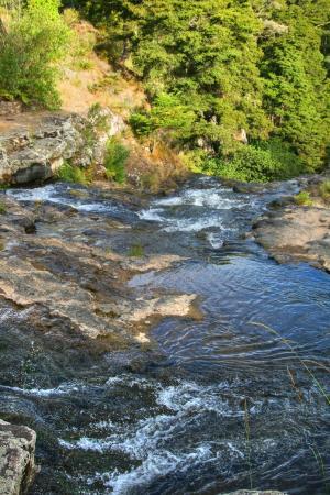 Whangarei, Nuova Zelanda: The river feeding these waterfalls
