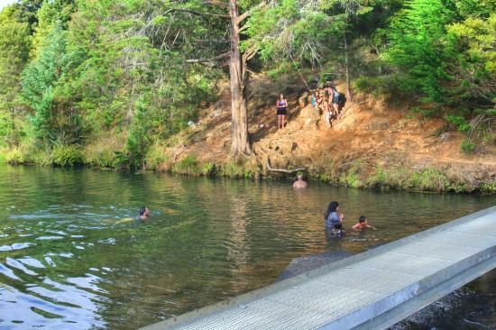 Whangarei, Nuova Zelanda: Many like to swim here!