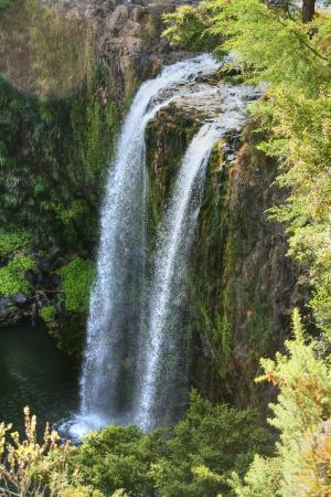 Whangarei Falls from the top