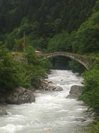 Ridos Thermal Hotel & Spa: ikizdere,rize