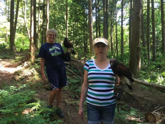 Raptors Ridge: A peaceful nature walk