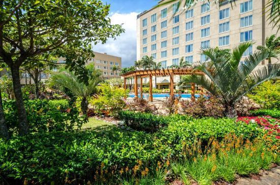 Zona de piscinas con bellos jardines picture of real - Piscinas con jardin ...