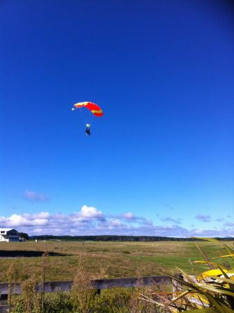 Skydive Taupo : the divers before us heading down