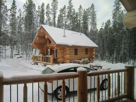 Yukon Pines 1 bedroom cabin Picture of Yukon Pines Cabins