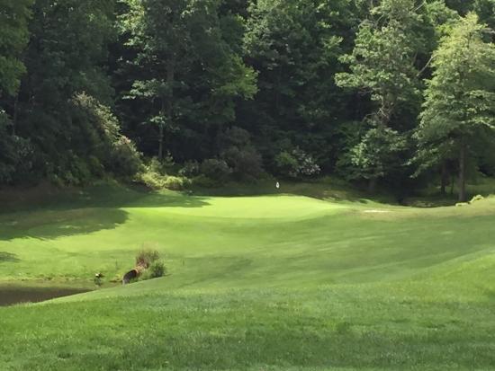 Connestee Falls Golf Club : Par 3