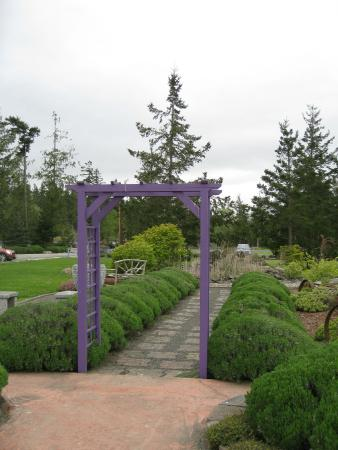 Sunshine Herb and Lavender Farm: Pretty gardens - Sunshine Lavender Farm