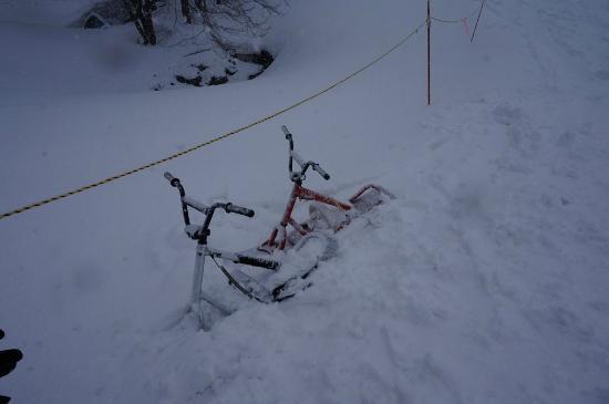Iwappara Ski Resort: Snowscoots