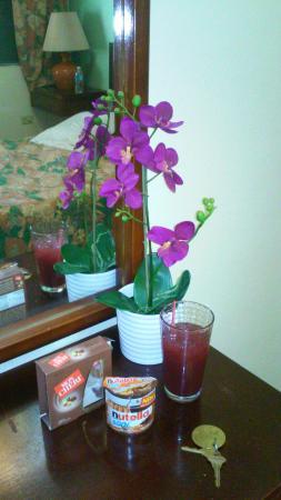 Hotel Iberia: La pasamos muy bien...buen sitio y buen trato