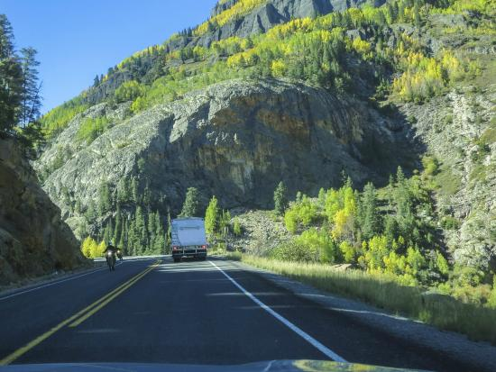San juan highway million dollar scenic byway picture of for Durango fish hatchery