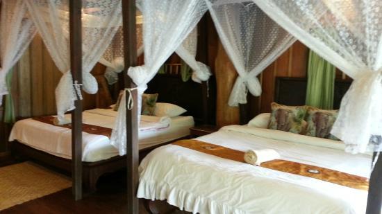Mahout Lodge: Room