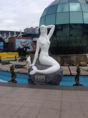 Changsha Aquarium