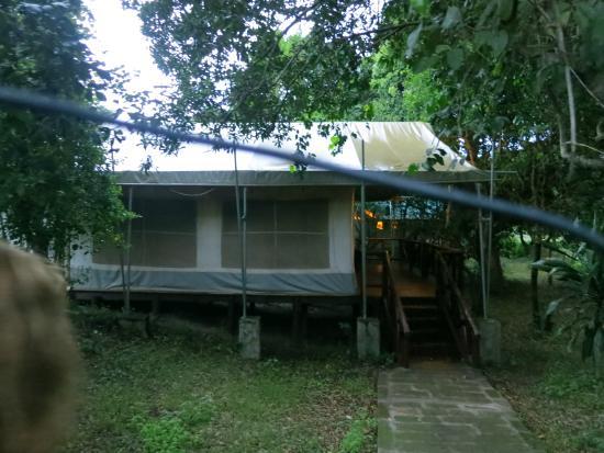 Mara Leisure Camp: Glamor tents