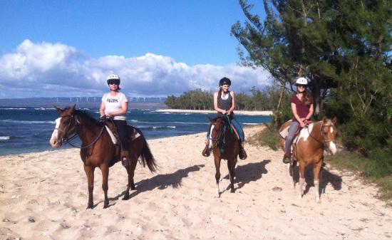 Oahu Horseback Rides Hawaii Polo Trail