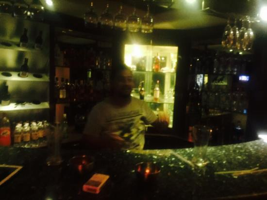 Hotel Viceroy Inn: the bar .dark and cosy .enjoyed a lot
