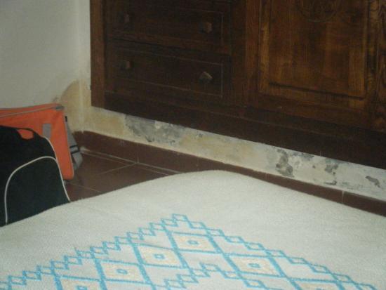 Bella la camera con la muffa. E meno male che non soffro di allergie ...
