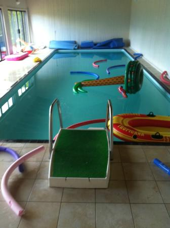 Craig Alvah Lodge: Swimming Pool