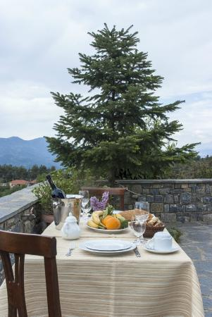 Aiora Luxury Suites: Δίπλα στο έλατο