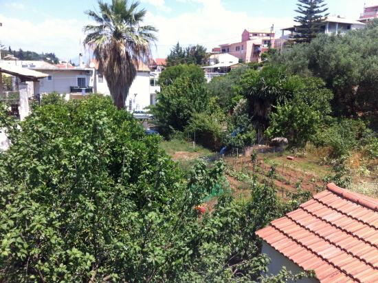 Donna Amalia Apartments: The gardens at the rear