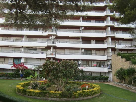 Apartamentos Montroig Mar: Зона сада