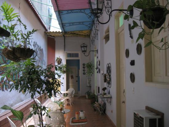 Casa Ricci: Pátio