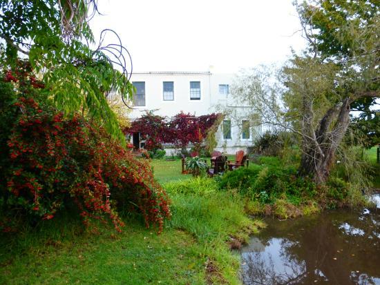 Sleeping Beauty Guest House: Jardín trasero