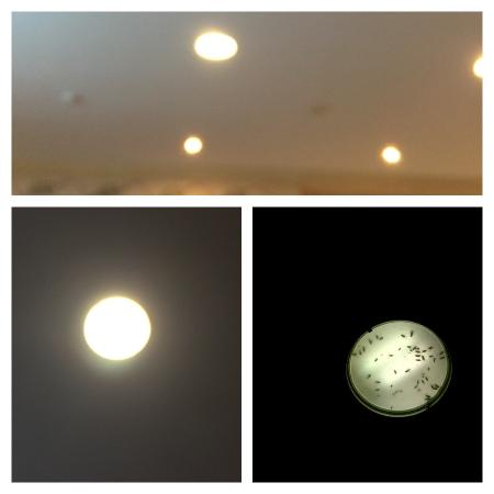 Carlton Al Moaibed Hotel: photo3.jpg