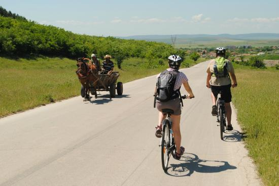 Plateau Cycling - Day Bike Tours