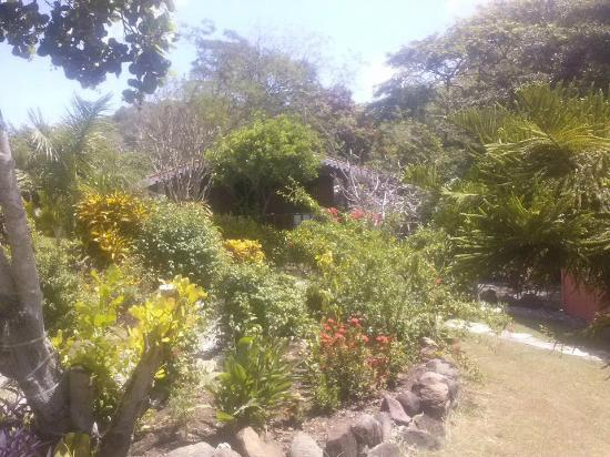 Bogles Round House: vista de la cabaña