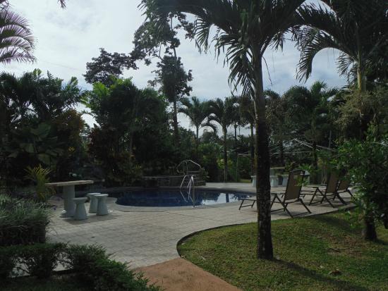 Hotel Vista del Cerro: Zona de pileta/parque