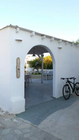Bonos Taverna