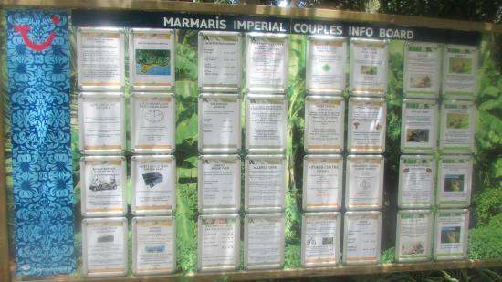 Marmaris Imperial Hotel: notice board