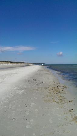 Dueodde Familiecamping & Hostel : Beach