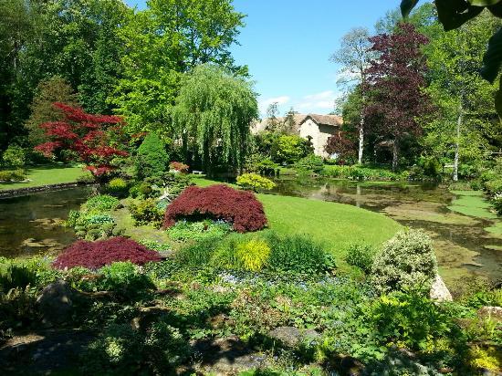 Le jardin japonais et ses habitants les poissons sont - Parterre jardin japonais ...