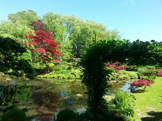 Le jardin japonais et ses habitants les poissons sont for Le jardin japonais