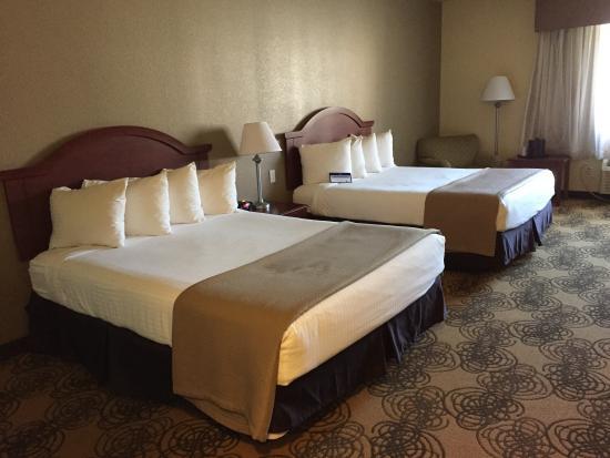 Best Western Elko Inn: 2 bed Queen bedded room