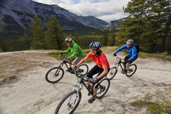 Banff Adventures: Bike Rentals